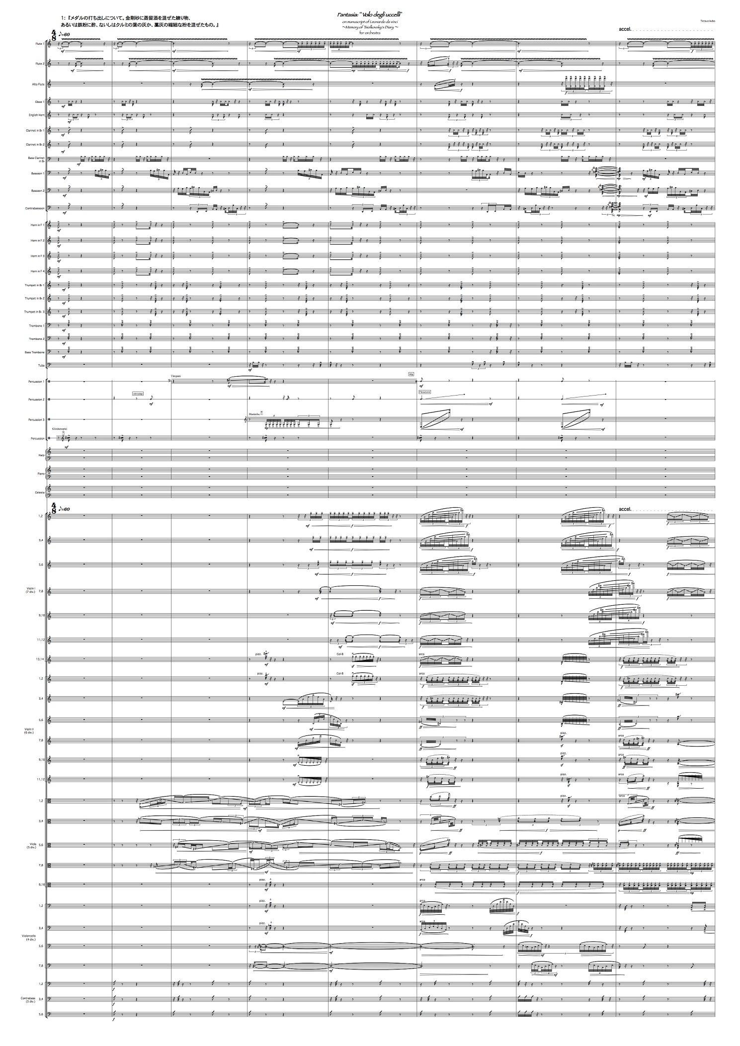 """Fantasia:""""Volo degli uccelli"""" on manuscript of Leonardo da Vinci ~Memory of Tsiolkovsky's Diary~ for orchestra (2016)"""
