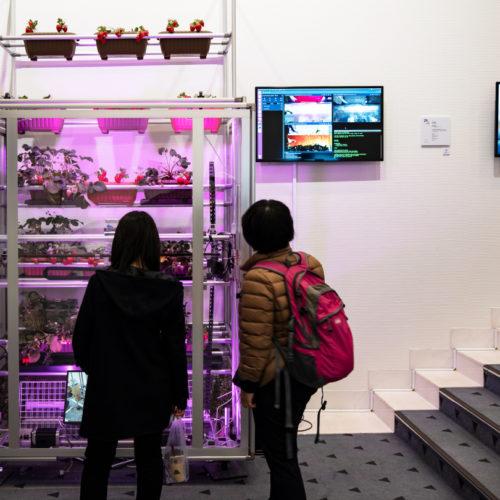 HARVESTX〜いちごの自動栽培収穫ロボットシステム〜