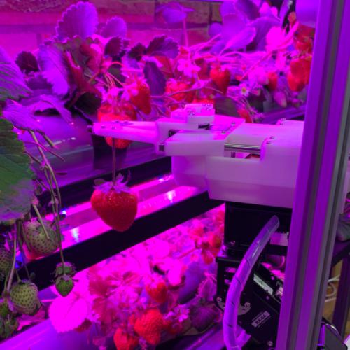 HarvestX 〜完全自動栽培に向けた果実の自動授粉・収穫ロボットシステム〜