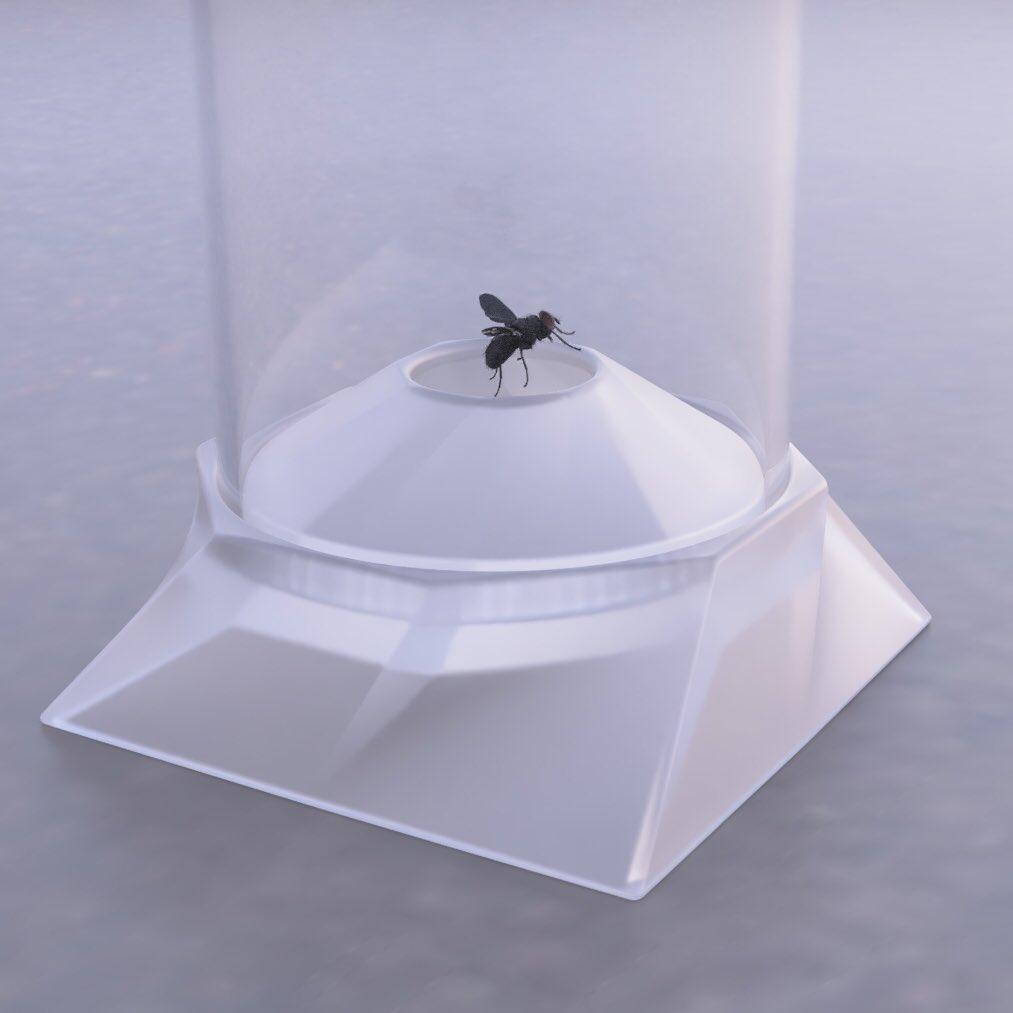 水野 諒大さん、部屋の虫を簡単に外へ逃がせる「BUG ROCKET」を開発中!